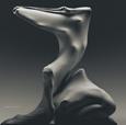immagine di due corpi che muovono sotto un velo