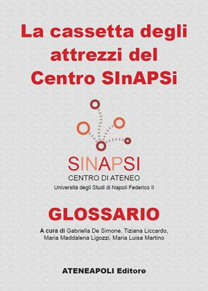 Cassetta degli attrezzi del Centro Sinapsi