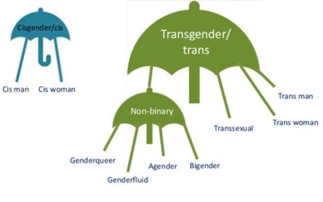 Mappa termini identità non binary